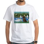 Sailboats & Newfoundland White T-Shirt