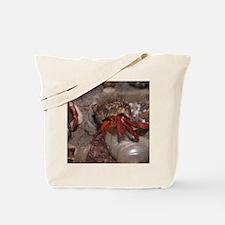 Cool Hermit crab Tote Bag