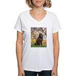Spring / Newfoundland Women's V-Neck T-Shirt
