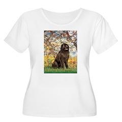 Spring / Newfoundland T-Shirt