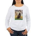 Spring / Newfoundland Women's Long Sleeve T-Shirt