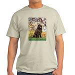 Spring / Newfoundland Light T-Shirt