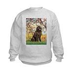 Spring / Newfoundland Kids Sweatshirt