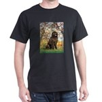 Spring / Newfoundland Dark T-Shirt