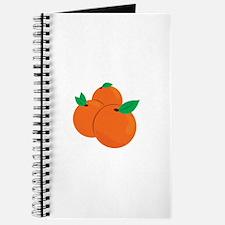 Citrus Fruit Journal