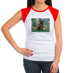Bridge / Newfoundland Women's Cap Sleeve T-Shirt