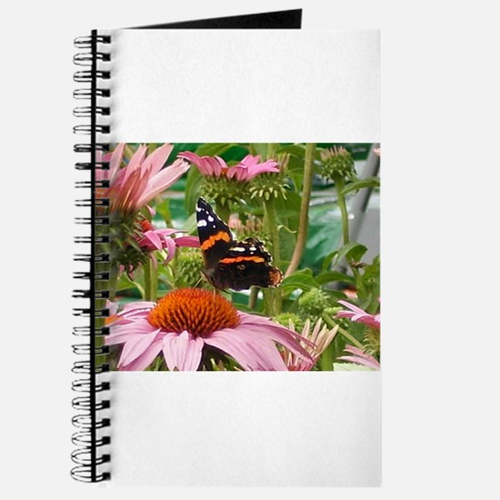 Butterfly On A Coneflower #4 Journal