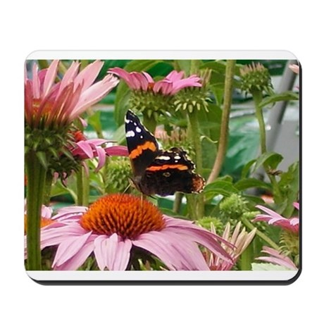 Butterfly On A Coneflower #4 Mousepad