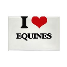 I love Equines Magnets