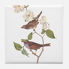 Audubon White Throated Sparrow Original Tile Coast