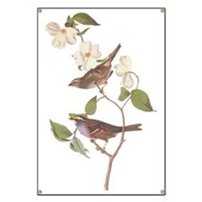 Audubon White Throated Sparrow Original Banner