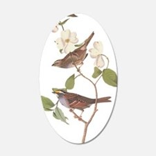 Audubon White Throated Wall Decal