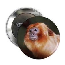 Golden Lion Tamarin Button