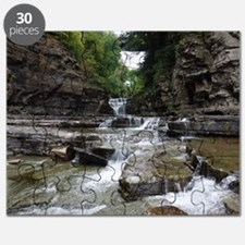 Manorkill Falls 1 Puzzle