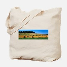 Contour strips of harve - Alaska Stock Tote Bag 17