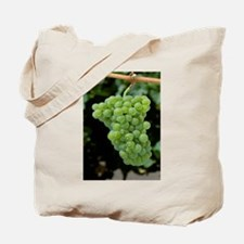 Mature Pinot Blanc wine - Alaska Stock Tote Bag 17