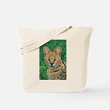 Serval, Huge Ears Act A - Alaska Stock Tote Bag 17