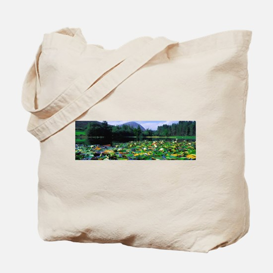 Silent Valley, Mourne M - Alaska Stock Tote Bag 17