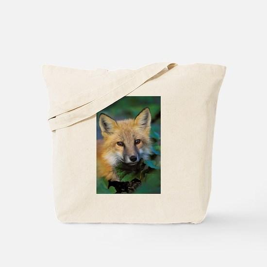 Red Fox, Gros Morne Nat - Alaska Stock Tote Bag 17
