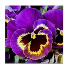 Beautiful purple pansy Tile Coaster