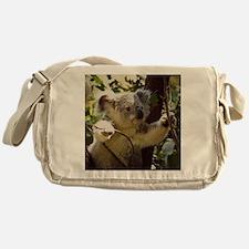Sweet Baby Koala Messenger Bag