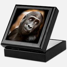 Smiling Gorilla Baby Keepsake Box