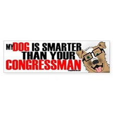 Stupid Congressman Bumper Car Sticker