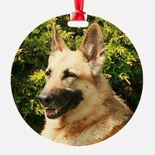 Jessie (2) Ornament