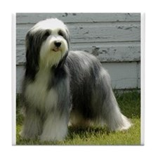Cute Bearded collie Tile Coaster