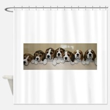 beagle puupies Shower Curtain
