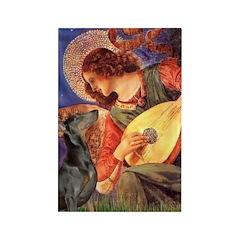 Mandolin Angel & Dobie Rectangle Magnet