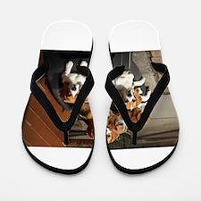 beagles Flip Flops