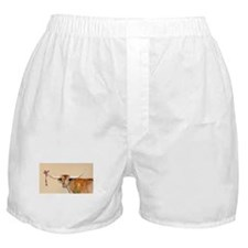 Long Horn Christmas Boxer Shorts