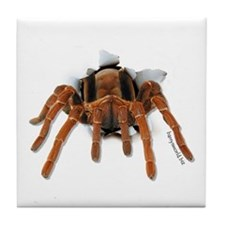 Spider Burster Tile Coaster