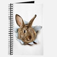 Bunny Burster Journal