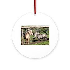 Miniature pet ponies in farm padd Ornament (Round)