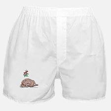 Goldendoodle Mistletoe Boxer Shorts