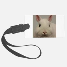 Dwarf Hotot Stare Luggage Tag