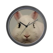 Dwarf Hotot Stare Wall Clock