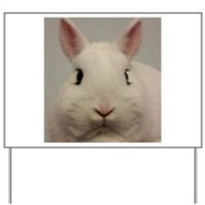 Dwarf Hotot Stare Yard Sign