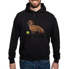 FIN-dachshund-life-ball.png Hoodie