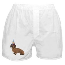Dachshund Party Boxer Shorts