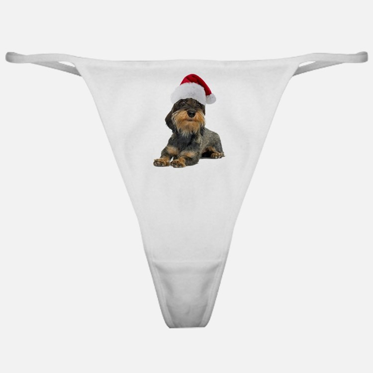 FIN-wirehaired-dachshund-santa-CROP.png Classic Th