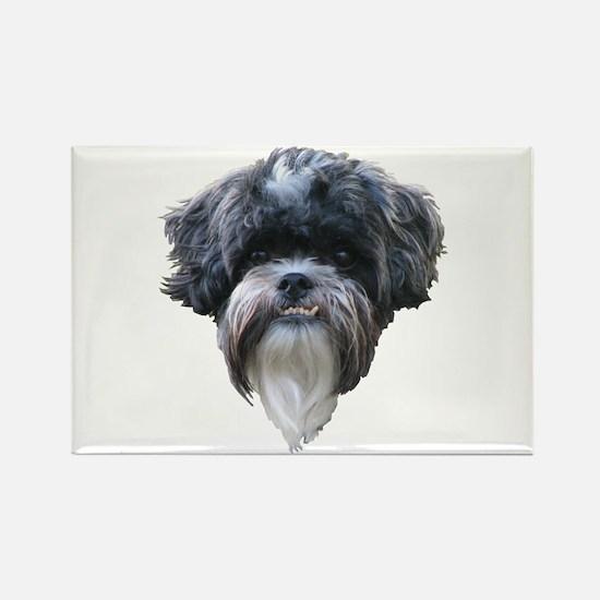 Scottie Dog Rectangle Magnet