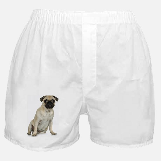FIN-fawn-pug-photo.png Boxer Shorts