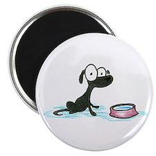 black lab puppy Magnet