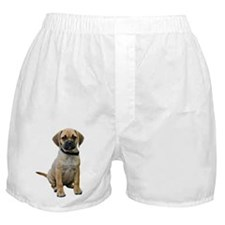 puggle-puppy-photo-TRANS.png Boxer Shorts