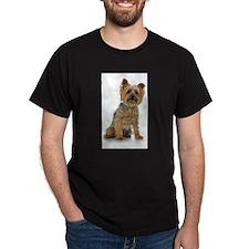 Silky Terrier Photo T-Shirt