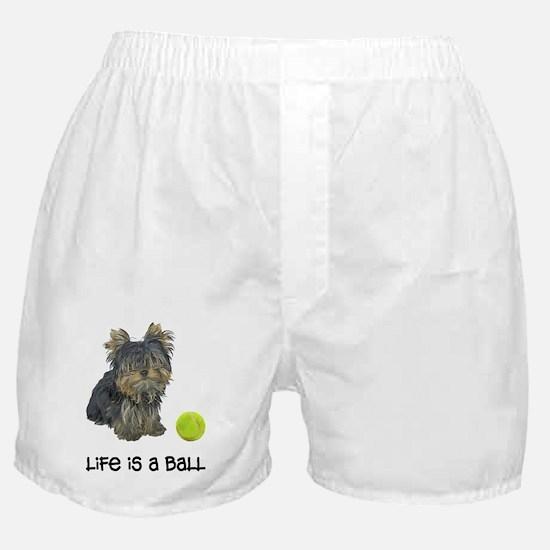 Yorkshire Terrier L... Boxer Shorts