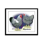 Silver Wyandotte Chickens Framed Panel Print